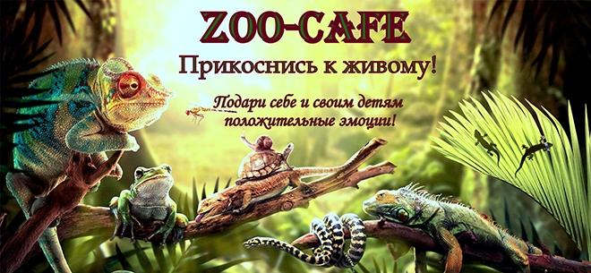 ZooCafe, 1