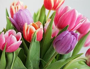 Для самых любимых и прекрасных! Роскошные букеты из тюльпанов и роз от магазина Botanica со скидкой до 33%!