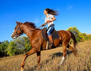 Активный отдых для детей и взрослых! Конные прогулки в горном комплексе Сункар со скидкой до 53%!