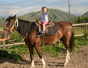 Прогулки на лошадях и обучение верховой езде в конном клубе Ауыл Берекесiсо скидкой до 75%!