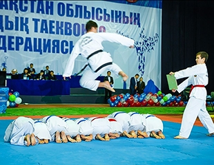 Крадущийся тигр! Затаившийся дракон! Занятия в секции Таэквондо для детей и взрослых со скидкой до 55% в Taekwondo Elite Club!