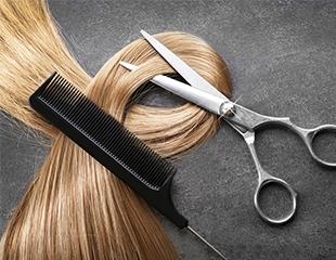 Мужские и женские стрижки, укладки,окрашивание, мелирование, омбре и многое другое в салоне красоты M`Style со скидкой до 57%!