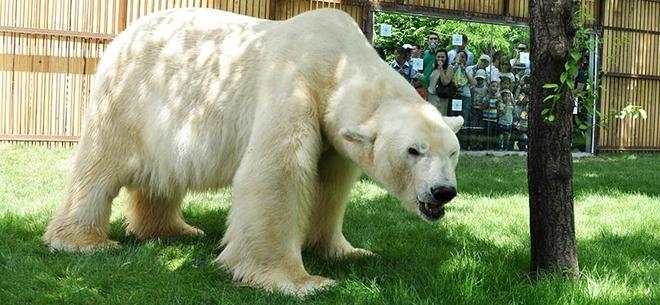 Алматинский зоопарк, 4