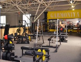 Стремление к совершенству! Безлимитное посещение тренажерного зала GARMONIYA gym от 1 до 6 месяцев со скидкой 50%!