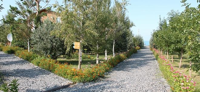 База отдыха Alateniz на озере Алаколь, 4