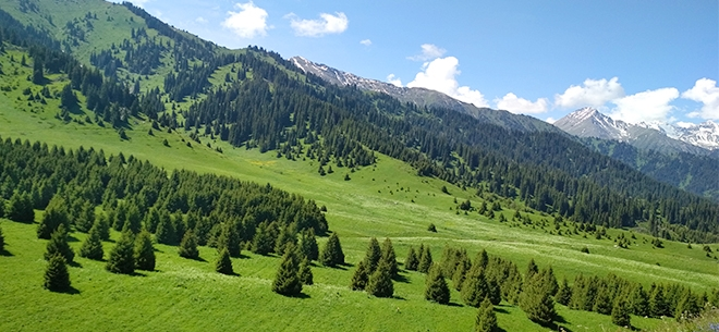 I love Almaty mountains, 1