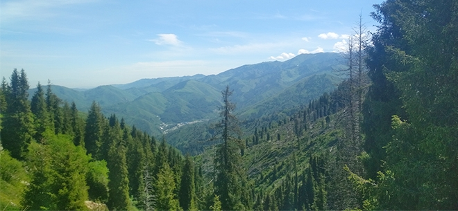 I love Almaty mountains, 3