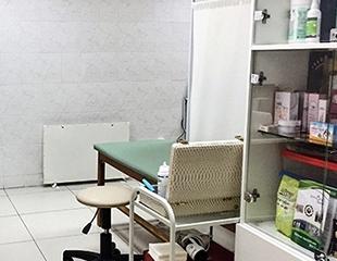 Уникальная методика против морщин, рубцов и других дефектов кожи! Сеансы улиткотерапии, ультразвуковой терапии, светолечения или лечения кровопусканием в Центре здоровья!