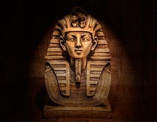Посетите увлекательный квест «Гробница Фараона» в будни и выходные дни со скидкой 50%!