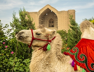 Исторический тур в Туркестан от Carpe Diem Company со скидкой 18%!