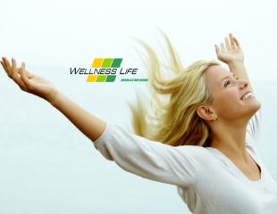 Полное восстановление организма! Электромагнитная терапия на аппарате Bemer 3000 от Wellness Life со скидкой до 60%!