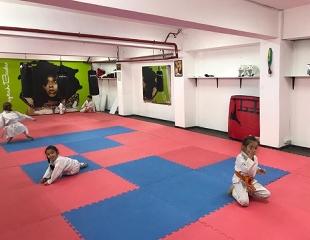 Karate-do kyokushinkaikan для детей и взрослых, а также фитнес-каратэ для девушек со скидкой до 75% в центре каратэ Arlan!