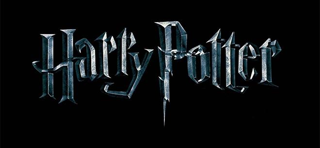 «Гарри Поттер и зловещее подземелье», 1