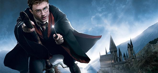 «Гарри Поттер и зловещее подземелье», 2