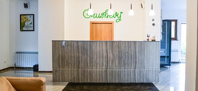 Hospitality Boutique Grushevy, 7