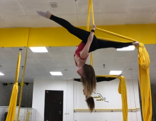 Ты можешь больше! Стрип-пластика, Стретчинг, BootyFit, Aerial Silk (акробатика на полотнах) и Barre Fitness со скидкой до 55% в Pantera_fitness!