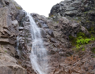Приключения не за горами! Отправьтесь в пеший тур на водопад «Бутаковки» от компании путешественников I love Almaty Mountains! Скидка 60%!