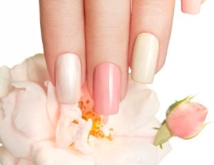 Свежий дизайн! Маникюр, педикюр и курсы обучения от мастера Алтынай в салоне красоты Beauty Beauty cо скидкой до 56%!