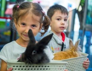 Стань ближе к природе! Посещение мини-зоопарка от парка развлечений EVRIKUM со скидкой 50%!