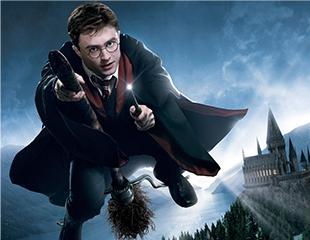 Окунитесь в мир магии и волшебства! Посетите приключенческий квест «Гарри Поттер и зловещее подземелье» в будние и выходные дни! Скидка 50%!