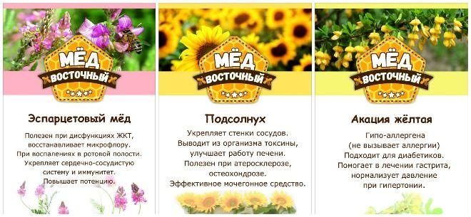 «Восточный мед»
