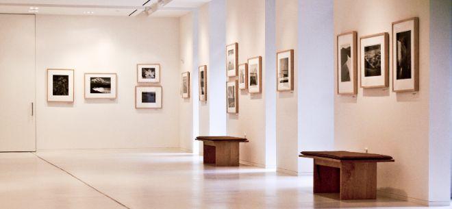 Музеи, галереи и выставки мира