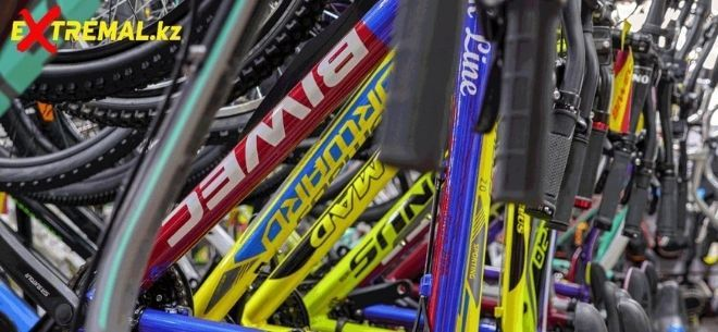 Сеть спортивных магазинов Extremal