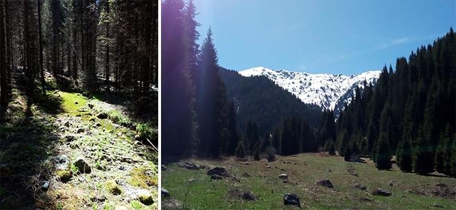 I Love Almaty Mountains