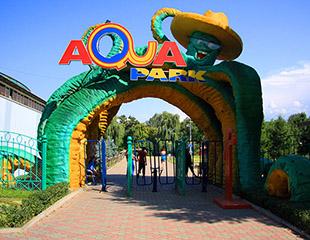 Лето! Солнце! Аквапарк! Веселись и отдыхай целый день в аквапарке в Центральном Парке Культуры и Отдыха со скидкой до 25%!